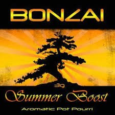Summer Boost Herbal Incense
