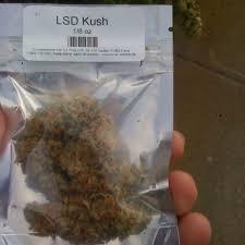LSD Kush For Sale